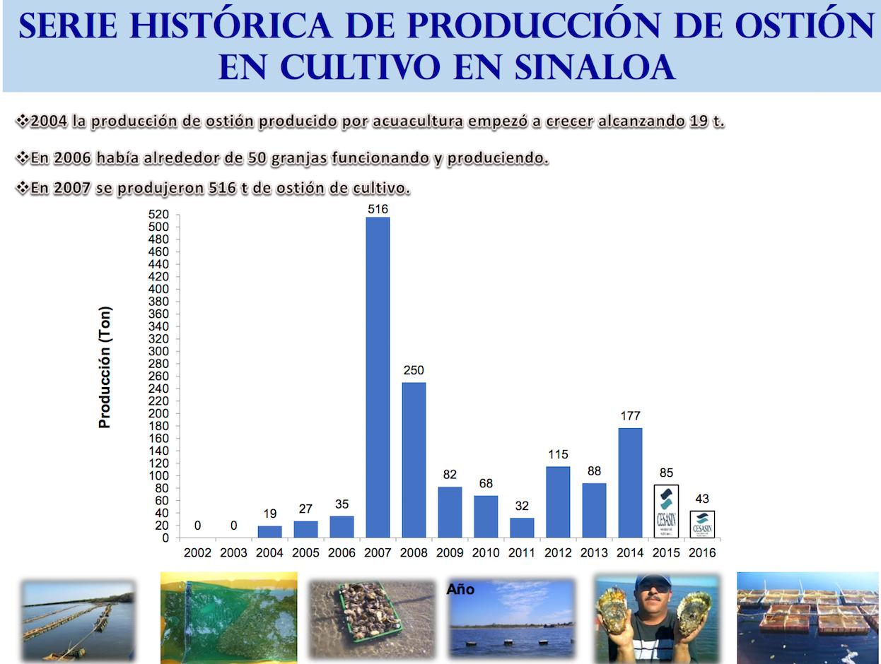 HISTORICO DE PRODUCCIÓN MOLUSCOS 01