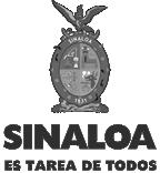 sinaloa1