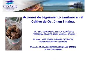 ACCIONES DE SEGUIMIENTO SANITARIO